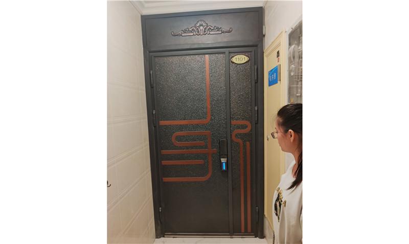 西安碧桂园小区家用入户铸铝门